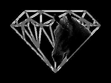 logo Haras du Diamantnoir