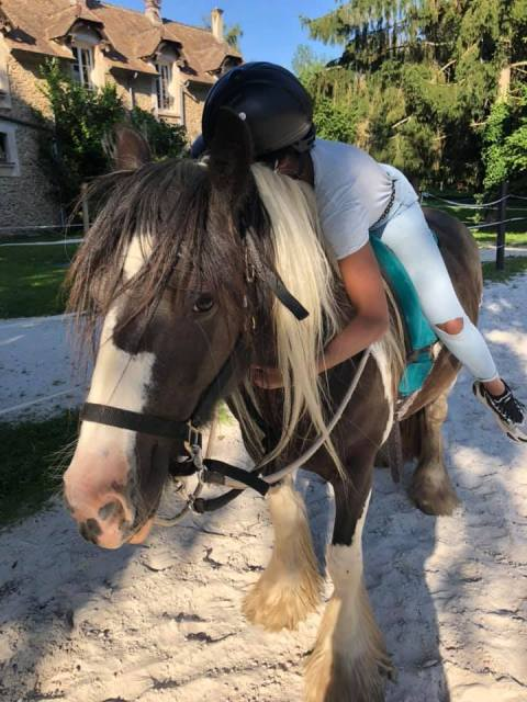 equicie calin cheval
